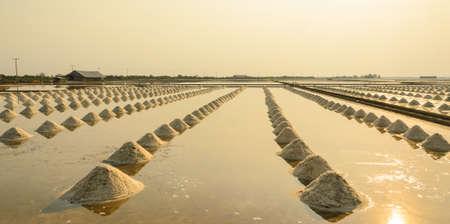Sea salt field at sunset photo