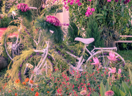Vintage bicycle garden decoration photo