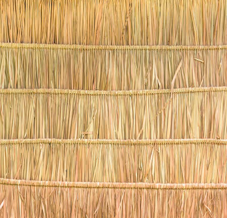 Tropical thatched roof background photo