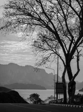 Stunning view of Limestone mountains and lake in Khao Sok National Park, Surat Thani Province, Thailand. Black and white color. photo