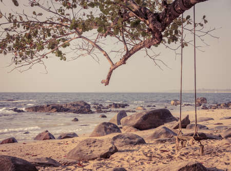 phang nga: Wooden swing hanging on big tree at Khao Lak beach in Phang nga province, Thailand. Vintage style color.