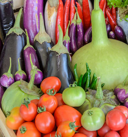 thai chili pepper: Assortment of fresh vegetable (purple egg plant, tomato, Thai eggplant, bottle gourd, red hot chili and tomato) in wooden box Stock Photo