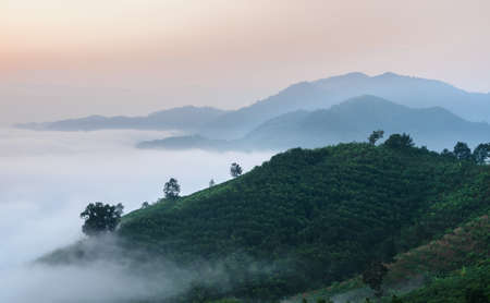 Sunrise with sea of fog above Mekong river at Phu Huai Isan mountain viewpoint in Nong Khai Province, Thailand Stockfoto
