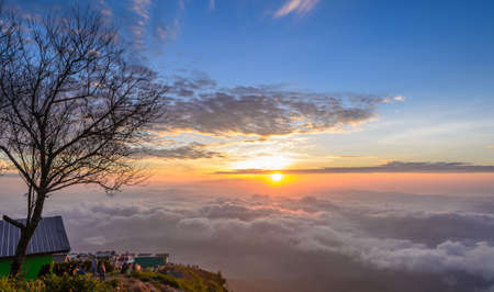 PHETCHABUN, THAILAND - SEPTEMBER 26, 2015 :  Silhouette of leafless tree and tourists looking on beautiful rising sun in the early morning over sea of fog on hill of Phu Tub Berk in Phetchabun, Thailand Editorial