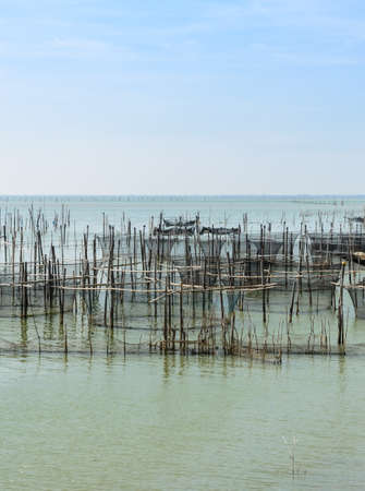 rearing of fish: Fish farming in the sea with cages for rearing fish in Thailand Stock Photo