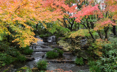 koyo: Traditional Japanese waterfall garden of Kokoen during autumn season in Himeji, Japan Stock Photo