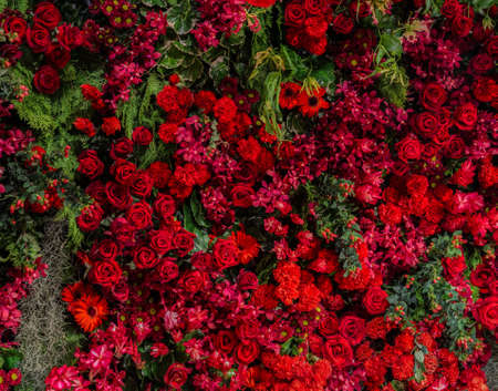 Beautiful natural flowers ornamental garden wall background with different types of red flowers as roses, carnation, mums, orchid, cockscomb, nerine and holly