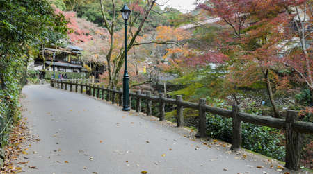 Minoo or Minoh park in autumn, Osaka, Japan. One of Japan's oldest national parks.