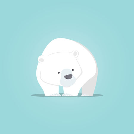 northpole: Polar bear cute cartoon, Polar bear cute character design, Vector illustration.