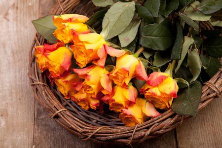 orange roses in basket on the wood photo