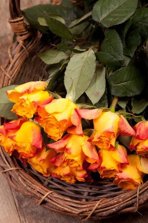 fresh orange roses in old wicker basket photo