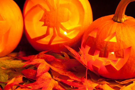 autmn: carved pumpkins on the colorfull autmn leaves Stock Photo