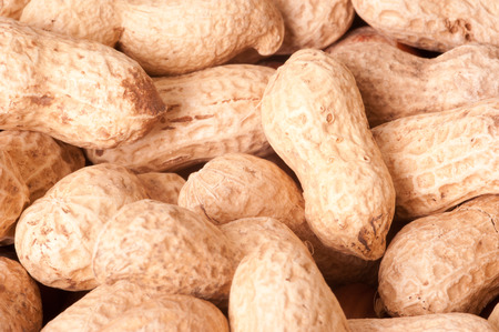earthnuts: peanuts macro picture lovely background Stock Photo