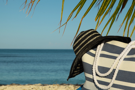 palm frond: stripey beach bag and hat under palm frond