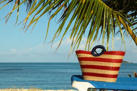 palm frond: stripey red wicker bag under palm frond