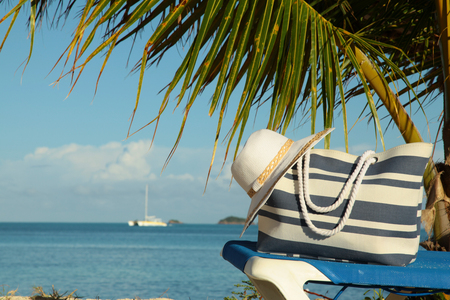 palm frond: stripey blue bag and white hat under palm frond