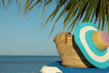 palm frond: whicker bag on sun lounger under palm frond