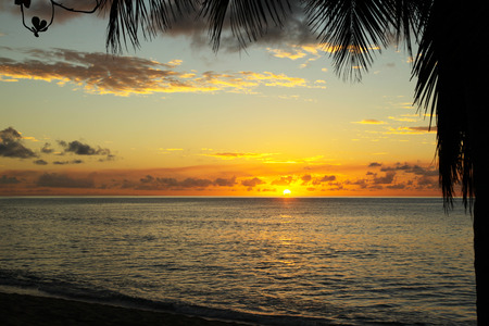 beach: lovely picture of sunset in caribbean Antigua