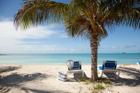 lounges: tropical beach in Antigua with sun lounges