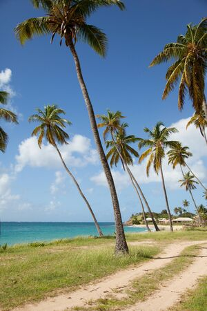 caribbean climate: vertical picture of sea view in Antigua