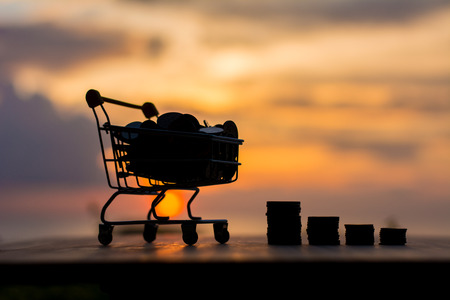 Silhouette coin in the shopping cart and coin in stack with sunset in financial money concept