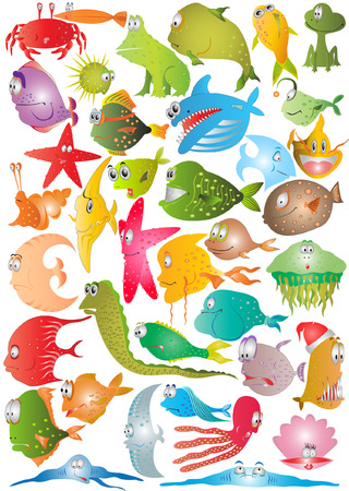 shell fish: there are fish cartoon characters