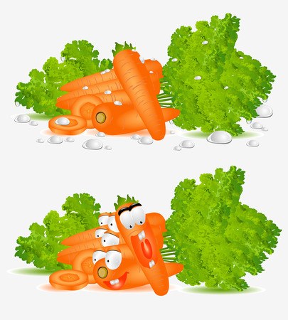 character carrot on white background