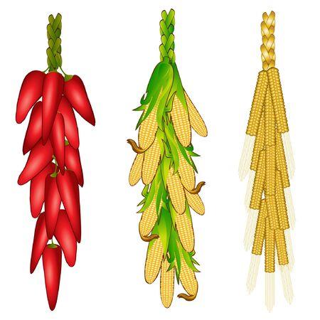 peper: corn hot papar grain set Illustration