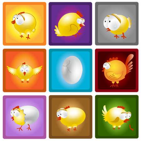 chicken hen egg set collection Vector