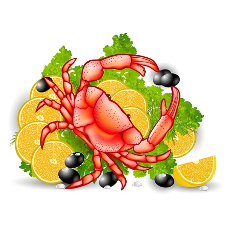 crab food vegetable background meal Stock Vector - 13611889
