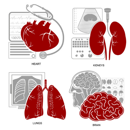 xray machine: Four flat design medecine icon heart lungs brain kidneys and their diagnostic equipments
