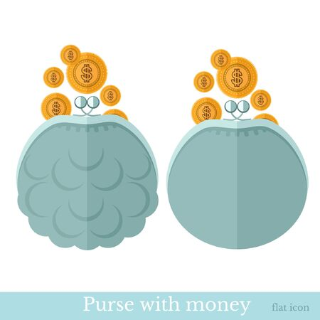 pouch: flat purse or pouch with gold coins on white