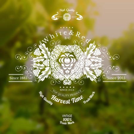 hojas parra: etiqueta de vino con las uvas en el centro y el patr�n de todo sobre fondo borroso realista
