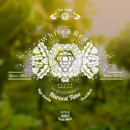 wine background: wine label with grapes in center and pattern around on realistic blurred background