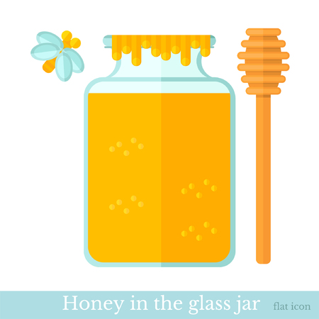 stick insect: flat icon jar of honey with spoon and bee