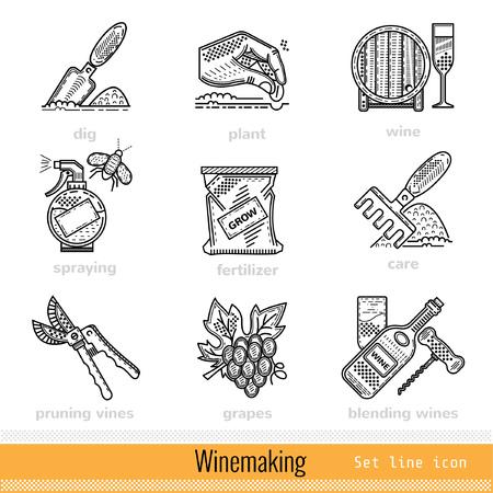 winemaking: Set of All Steps of Winemaking Outline Web Icons Illustration