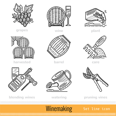 winemaking: Set of Steps of Winemaking Outline Web Icons