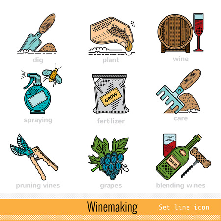 winemaking: Set of All Steps of Winemaking Outline Color Web Icons Illustration