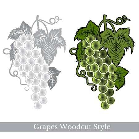 grapes in isolated: Black and color engraving label for food or cosmetics. Two bunch of grapes isolated on white