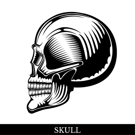 Black human skull in profile with a lower jaw