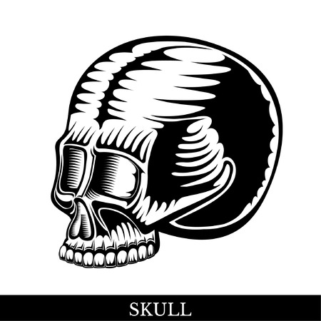 Black human skull half-turned view without a lower jaw Illustration