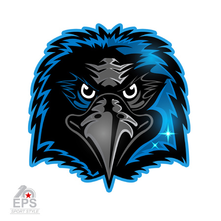 Bird head icon for any sport team blackbirds isolated on white