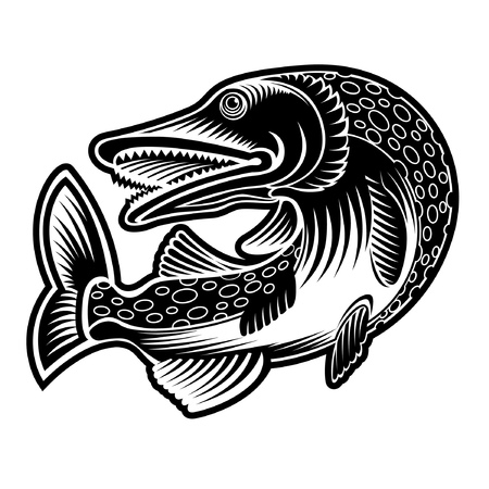 Perch or luce fish silhouette in engrving style. Logo for fishing, menu and other business 向量圖像