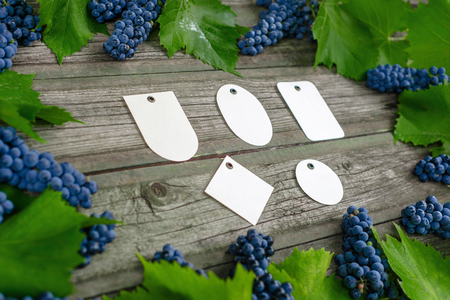 Vine with blue grapes and leaves around on vintage rustic wooden table. Set of differents paper tags template in center