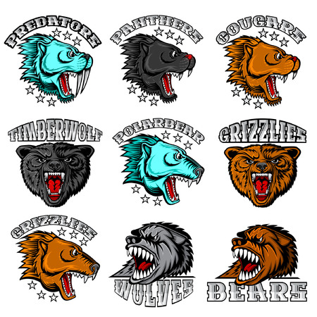 Beast face from the side and front view with bared teeth. Panther, cougar; bear, wolf, polarbear, grizzly, predator. Logo for any sport teams isolated on white