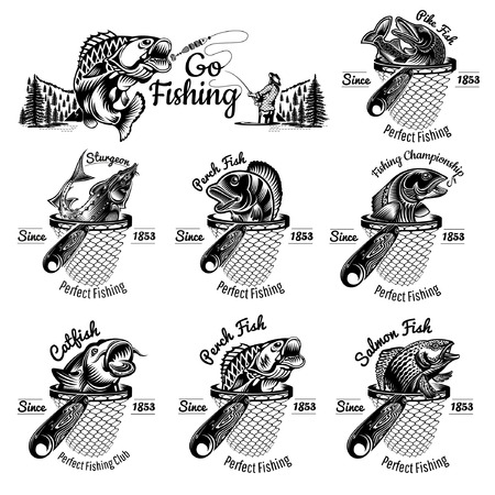 Set of different fishes head up from landing net in engraving style. Catfish, perch, salmon, sturgeon, pike. Logo for fishing or fishing shop isolated on white Illustration