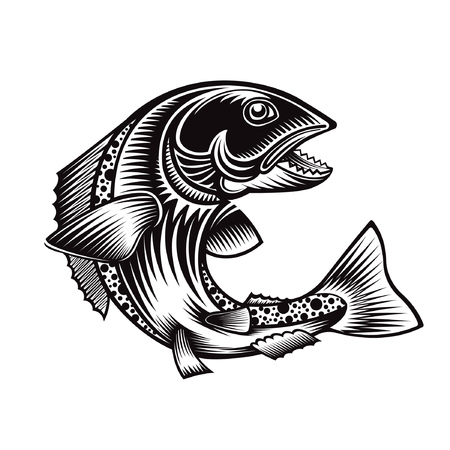 Salmon fish bend silhouette in engrving style. Logo for fishing, menu and other business Çizim