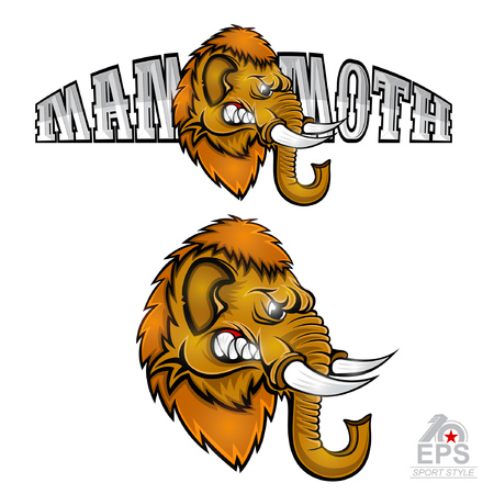 Two banners with mammoth head from the side view with bared teeth. Logo for any sport team isolated on white