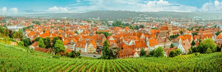 Vineyard on hill and old city with red roofs in the valley. Landscape panorama from top