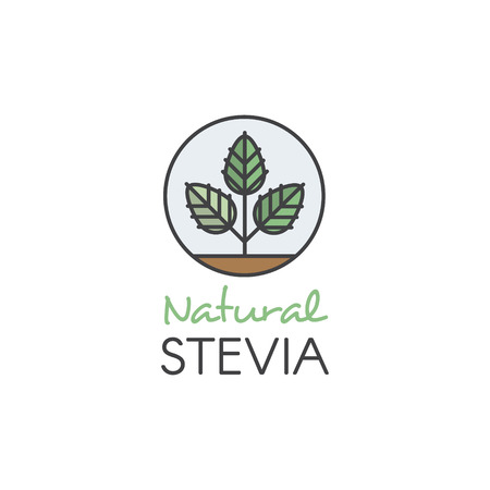 Vector Icon Style Illustration Logo of Stevia Leaf Natural Organic and Healthy Sweetener